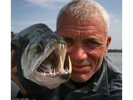 Chuyện ma về câu cá, CÁ NÓI TIẾNG NGƯỜI!