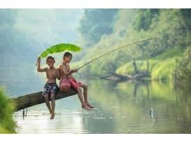 Cần câu cá, câu cá thư giãn, câu cá giải trí