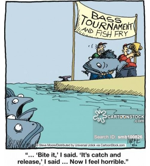 Kinh nghiệm câu cá hiệu quả, đi câu là có cá