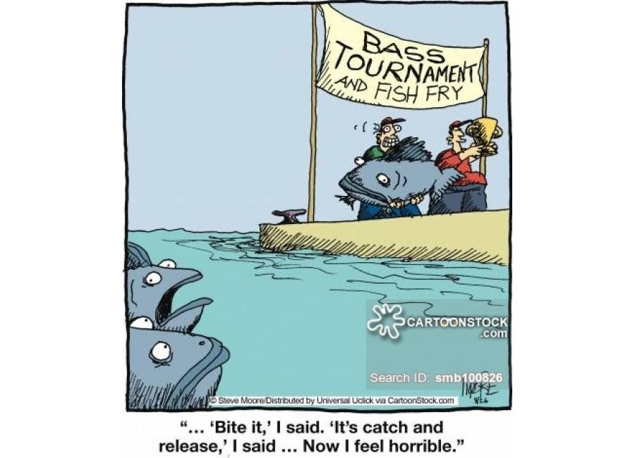 Đam mê câu cá, câu cá là đây