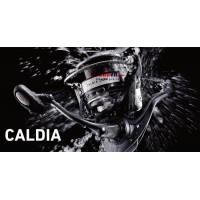 Máy câu cá Daiwa NEW CALDIA 4000